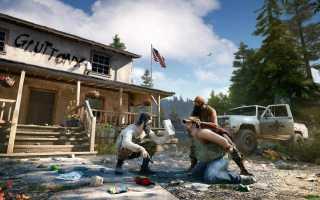 FAQ по ошибкам Far Cry 5: не запускается, черный экран, тормоза, вылеты, error, DLL
