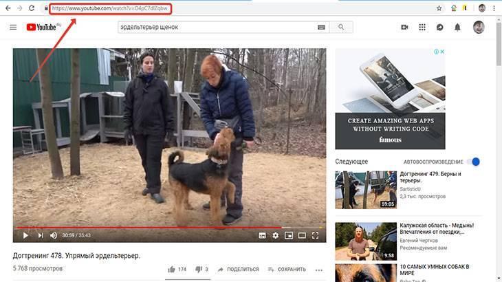 ponravivsheesya-video-yutub.jpg