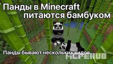 1539380498_pandas-in-minecraft-1-8.jpg