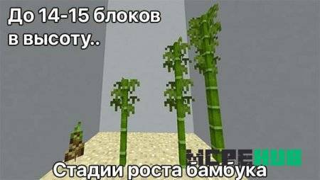 1539382673_bamboo-in-minecraft.jpg