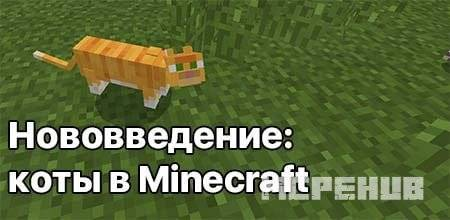 1544554021_tamed-cat-in-minecraft.jpg