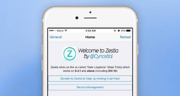 Zestia-6.jpg