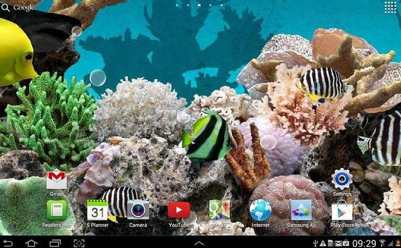 akvarium-zhivye-oboi.jpg